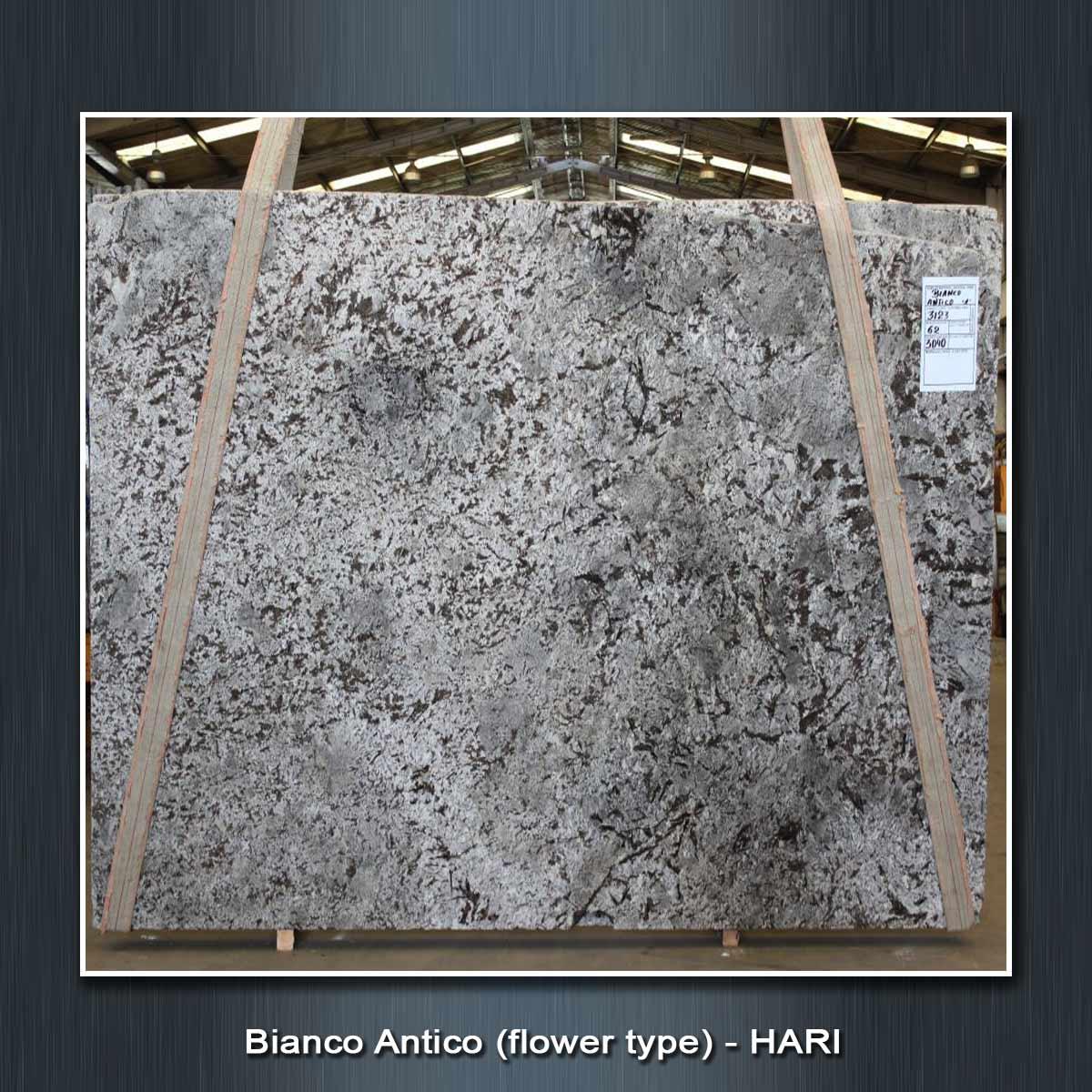 Bianco Antico (flower-type)